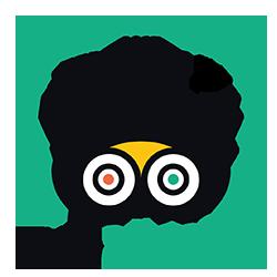 tripadvisor-exzellenz-sportpark-gelsenkirchen-250